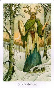 5 Предок Таро Дикого Леса - The Wildwood Taro