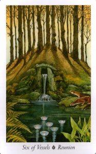 6 Сосудов Таро Дикого Леса - The Wildwood Taro